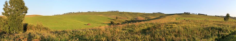 Beautiful panorama agricultural fields in August Royalty Free Stock Photography