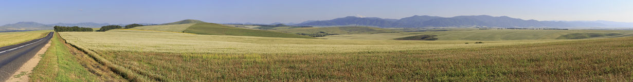 Beautiful panorama agricultural fields in August Stock Photography