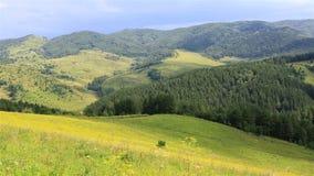 Beautiful panorama of Altai Mountains in resort stock footage