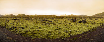 Beautiful panorama of the amazing volcanic mossy landscape Royalty Free Stock Images