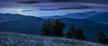 Beautiful panorama of Carpathians at night. Beautiful panorama of Carpathian mountains in early autumn weather. few beech tree tops behind the grassy slope of a Stock Images