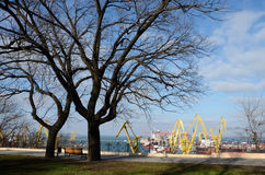 Beautiful panorama of colourful Odessa sea port cranes ,Ukraine Stock Photos
