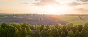 Beautiful panorama of a field against a sky at sunset. Photo from the drone. Panorama of a field with a rural road and forest against the sky at sunset. Photo stock image