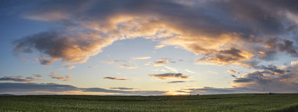 Beautiful panorama landscape South Downs countryside in Summer Stock Image
