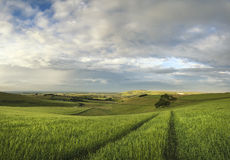 Beautiful panorama landscape South Downs countryside in Summer Royalty Free Stock Photos
