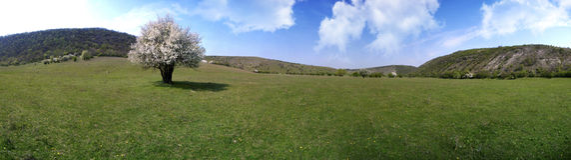 Beautiful panorama of moldavian landscape Royalty Free Stock Photos