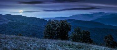 Free Beautiful Panorama Of Carpathians At Night Stock Images - 97898264