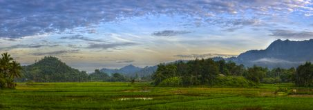 Beautiful Panorama of Rice Fields in the Morning at Padangbalimbiang Among the Hills and Mountains royalty free stock photo