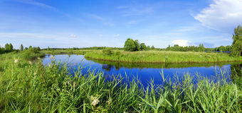 Beautiful panorama of the river of Berezina Stock Photo