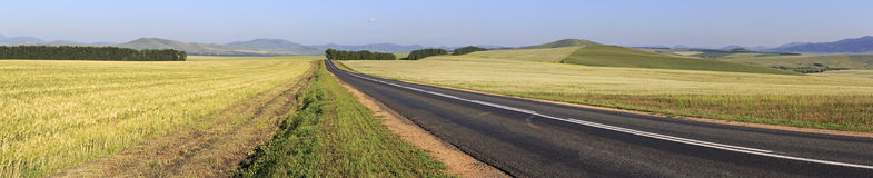 Beautiful panorama the road among farm fields Royalty Free Stock Photos