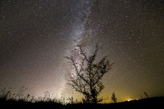 Beautiful panorama, rural landscape at night. Dark contrast silhouette of lonely tree on dark sky with myriads of white sparkling. Stars, Milky Way galaxy and royalty free stock photos