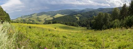 Beautiful panorama of the summer landscape in Altai Mountains. Beautiful panorama of the summer landscape in the Altai Mountains Stock Photography