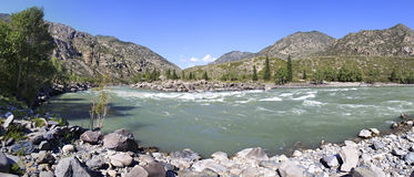 Beautiful panorama summer mountain river Katun. Beautiful panorama of summer mountain river Katun Royalty Free Stock Photos