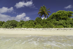 Beautiful panorama of tropical beach in Maldives Royalty Free Stock Image