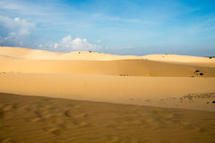 Beautiful panorama from the white dunes in vietnam Royalty Free Stock Photography