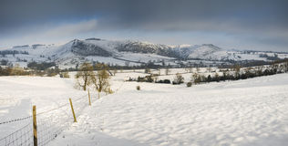 Beautiful panorama Winter landscape of snow covered countryside Royalty Free Stock Images