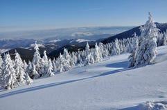 Beautiful panorama of winter mountains Stock Images