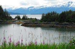 Alaska- Beautiful Panoramic Landscape Near Juneau stock images