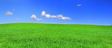 Beautiful panoramic view of peaceful grassland Stock Photography