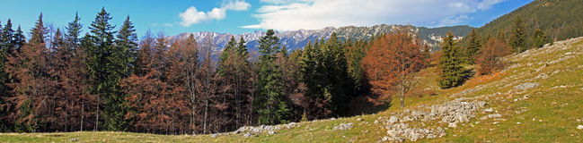 Beautiful panoramic view of the Piatra Craiului mountains Stock Photos