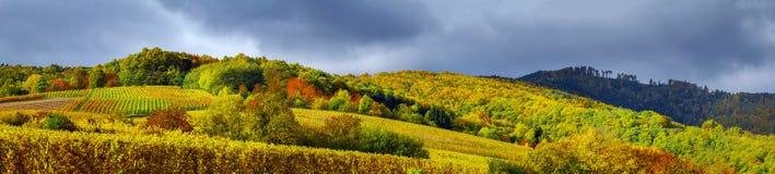 Beautiful panoramic view to Andlau, France Stock Photos