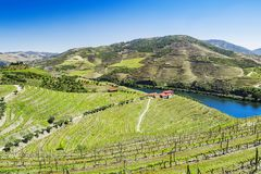 Douro Valley. Vineyards and landscape near Pinhao town, Portugal. Beautiful panoramic view of vineyards and landscape near Pinhao town, Portugal. Douro Valley stock photo