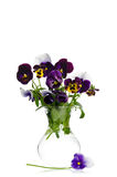Beautiful pansies in transparent vase Royalty Free Stock Photography