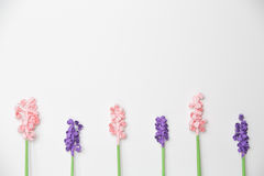 Beautiful Paper Flower Pattern. Pattern of hand crafted paper flowers Royalty Free Stock Images
