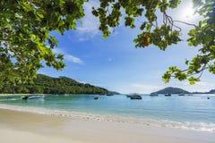 Beautiful paradise beach,white sand,turquoise water,palms, seych. Beautiful paradise beach anse bazarca on mahé. white sand,turquoise water,palm trees, granite Royalty Free Stock Photos