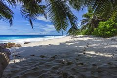 Beautiful paradise beach, anse bazarca, seychelles 11 Royalty Free Stock Photo