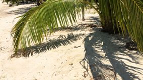 Beach at koh Phangan. Beautiful paradise beach at koh Phangan, Thailand stock video footage