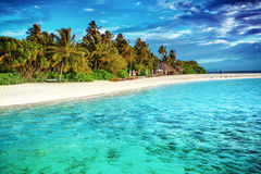 Beautiful paradise beach. Luxury tropical resort, turquoise transparent sea around the island with fresh green palm trees on the coast, summer vacation on Royalty Free Stock Photography