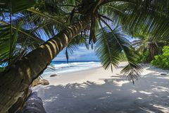 Beautiful paradise beach, anse bazarca, seychelles 5 Stock Image