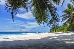 Beautiful paradise beach, anse bazarca, seychelles 13 Royalty Free Stock Images