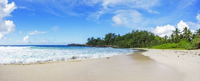 Beautiful paradise beach at the police bay, seychelles 40. Beautiful paradise beach with palms, white sand, turquoise water and granite rocks at the police bay royalty free stock photo