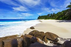 Beautiful paradise beach,white sand,turquoise water,palms,rocks,. Picturesque beautiful paradise beach anse bazarca on mahé. white sand,turquoise water,palm Royalty Free Stock Photo