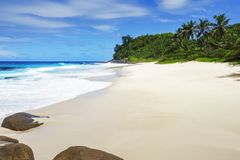 Beautiful paradise beach,white sand,turquoise water,palms,rocks,. Picturesque beautiful paradise beach anse bazarca on mahé. white sand,turquoise water,palm Royalty Free Stock Image