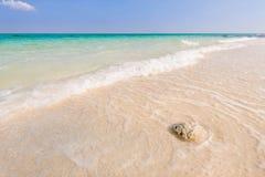 Beautiful paradise island Royalty Free Stock Photos