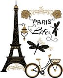 Beautiful paris design with flowers and dragonflies for apparel and t-shirt. Fly and roses golden color Vector Illustration