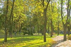 Beautiful park Stock Images