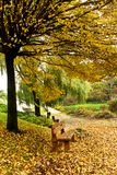 Beautiful park Royalty Free Stock Image