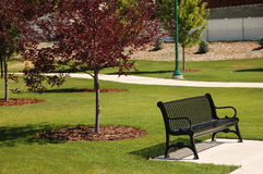 Beautiful park. Park bench along the path of a  beautiful park Royalty Free Stock Images