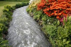 Beautiful park. With nice stream and lovely Azaleas Stock Image
