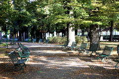 Beautiful park alley and avenue in summer Royalty Free Stock Photos