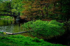 Beautiful park in Amsterdam Royalty Free Stock Photo