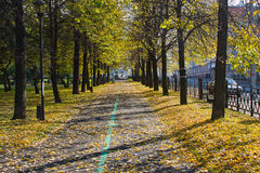Beautiful park in an autumn sunny day Royalty Free Stock Photos