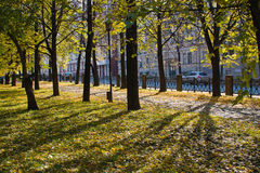 Beautiful park in an autumn sunny day Stock Images