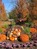 Pumpkins, colorful flowers and decorative grasses as a park`s center piece. A beautiful park with botanical gardens and ponds has a center piece of multi Stock Photo