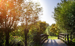 Beautiful Park with a Bridge Royalty Free Stock Photography