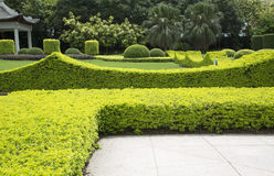 Beautiful park in the city royalty free stock photography